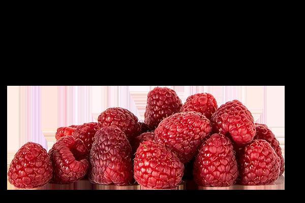 Blairgowrie Raspberries For Sale | D & B Grant